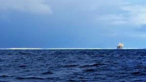 Aves Island 2