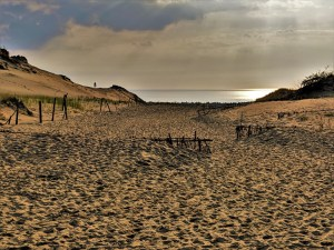 Curonian Spit - Grey Dune
