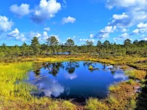 Lahemaa National Park 2
