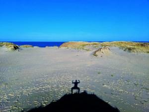 Nida Sand Dune 2