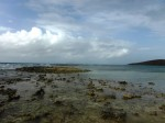 Along the reef