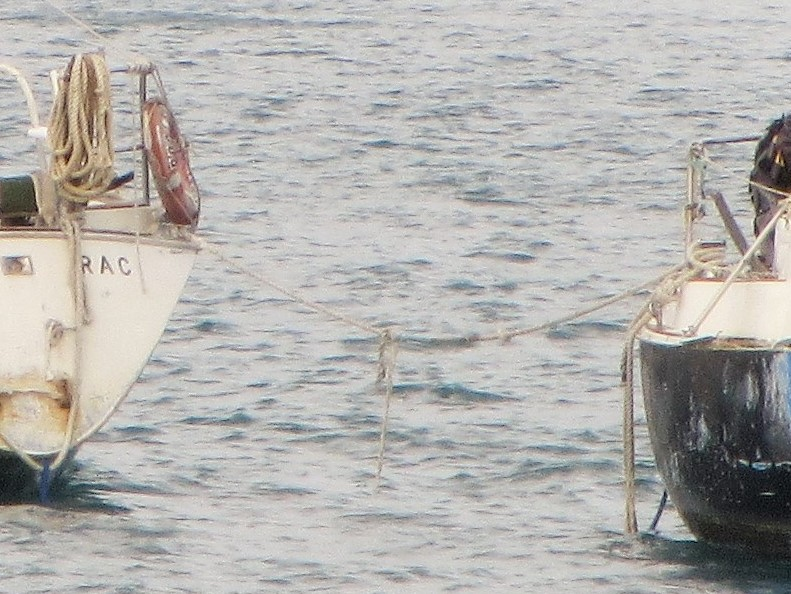 Deralic Boats upclose