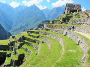 Peru - Machu Picchu - Agriculture Fields