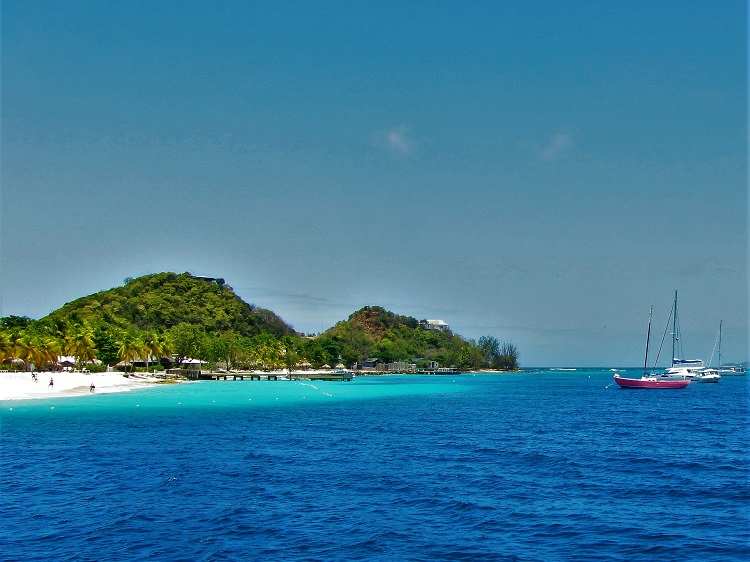 Palm Island 2