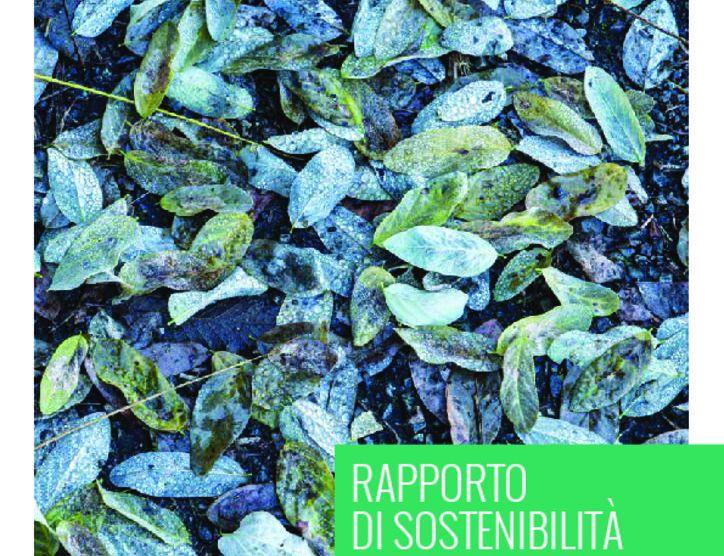 thumbnail of ECODOM_2016_Rapporto_di_sostenibilità_2015