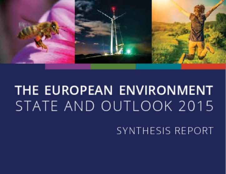 thumbnail of EEA_2015_The_European_environment_state_and_outlook_2015