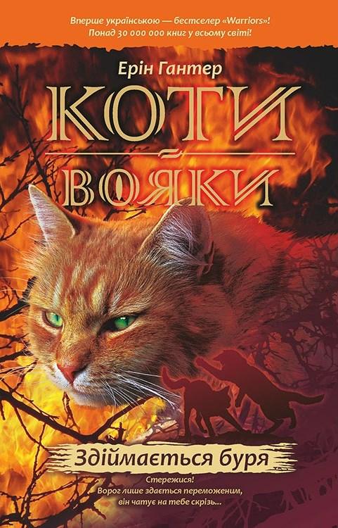 Book Cover: Здіймається буря