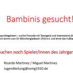 Bambinis Gesucht (2016)