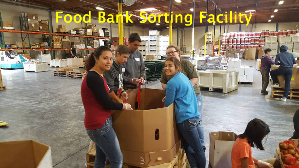 5 food bank sorting