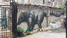 Love the wall art in Panama City, Panama