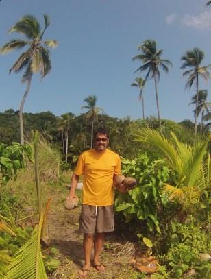 Coconut hunter
