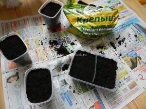 तंबाकू रोपण के लिए मिट्टी