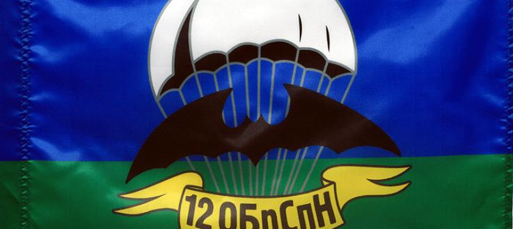 12-я отдельная бригада специального назначения