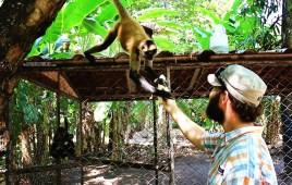#Barillas_Neil + monkey1