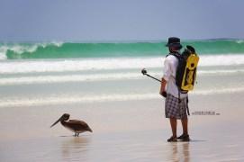#Isla Santa Cruz_Playa Brava_Neil1