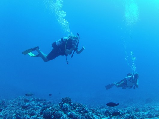 Audrie and Bruce on the reef at Moorea
