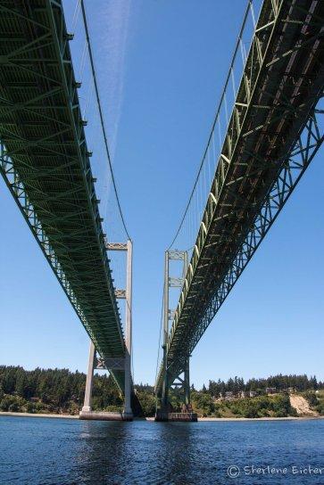 TN Bridge