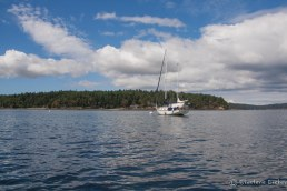 Turn Island-12