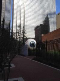 dallas eye 12-3-2013 (10)