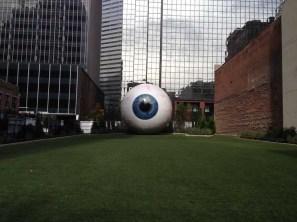 dallas eye 12-3-2013 (3)