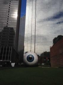 dallas eye 12-3-2013 (5)