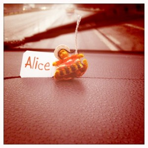 De geluksbrenger van baby Alice