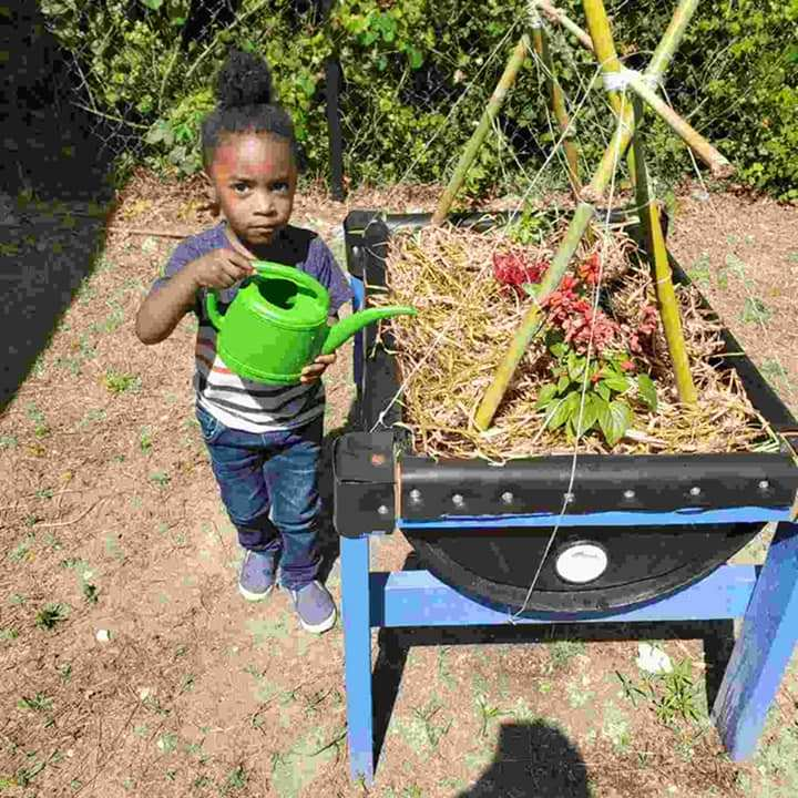 A child looks at the camera with an expression of concentration, poised to water the CHILD Center garden