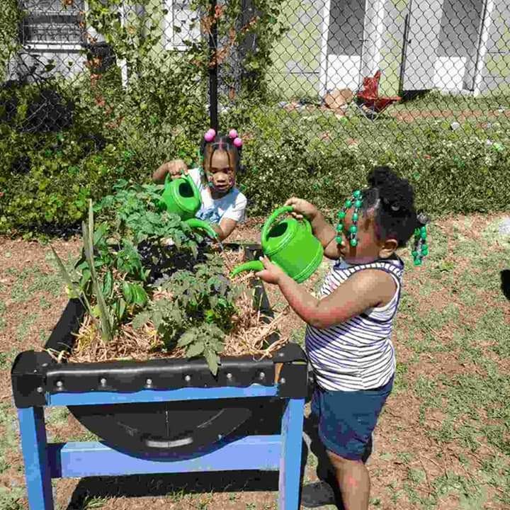 Two young children stand on either side of a garden bed, each using a green watering can to water the plants inside