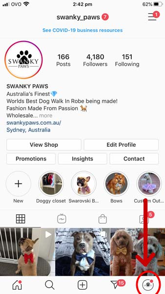A red circle outlining where to find the profile section of Instagram to edit your profile for your dogs account