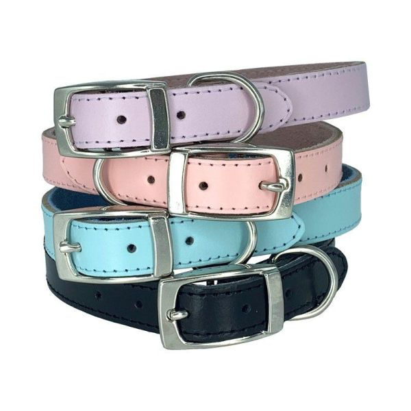Super comfortable leather dog collars in 4 colours- Lilac, Light Blue, Light Pink and Black. All lined with a comfortable suede