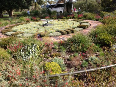 Floral clock planted in native species