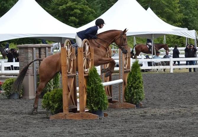 oregon_horse_boarding