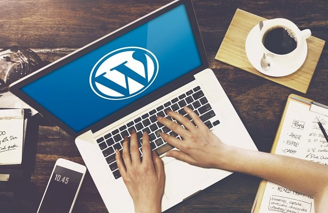 WordPress-site-LeeMag-Image