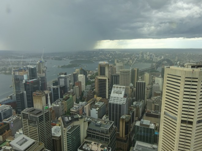 Sydney From The Sydney Tower