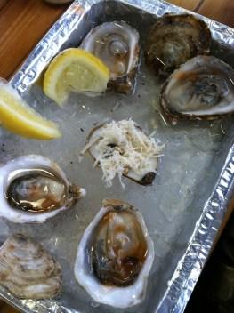 Oyster bar in Jean Talon