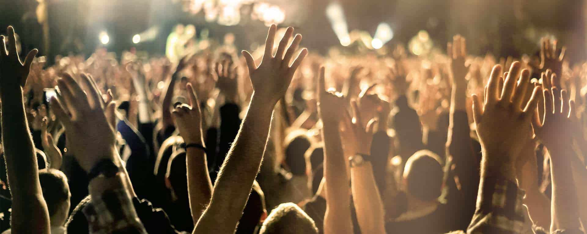 Image of raised hands celebrating, representing success with Swartz Consulting