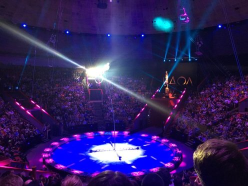 Swatiness_Moscow-Circus 2