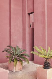 Swatiness_Pink Aesthetic Inspiration 13
