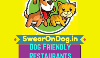 dog friendly restaurants in bangalore