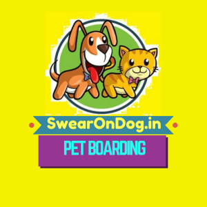 Dog Boarding Near Electronic City, Hosa Road, Kudlu, Bommanahalli, Jail Road; Dog Boarding in HSR Layout, BTM Layout, Bannerghatta