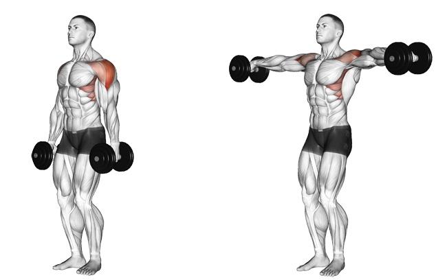 SWEAT by SlimClip Case lateral-shoulder-raises lateral shoulder raises