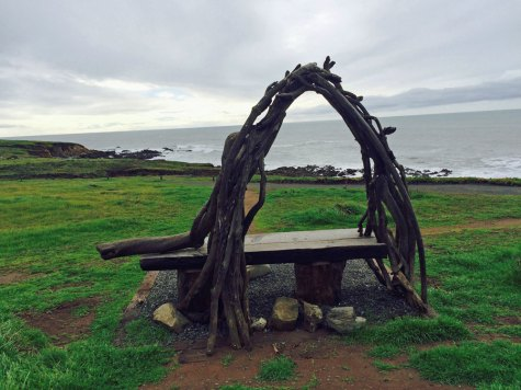 Arched-branches-over-bench-Cambria-beach