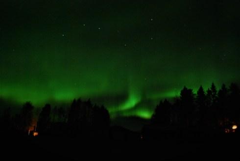 Northern Lights over our forest near Vindeln, Vasterbotten, Northern Sweden. Photo taken by Kristin King.