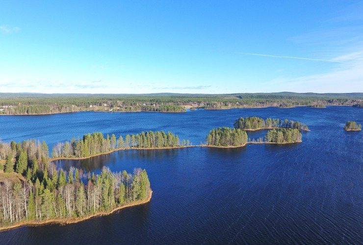 Fishing trips and birdwatching holidays near Vindeln northern Sweden