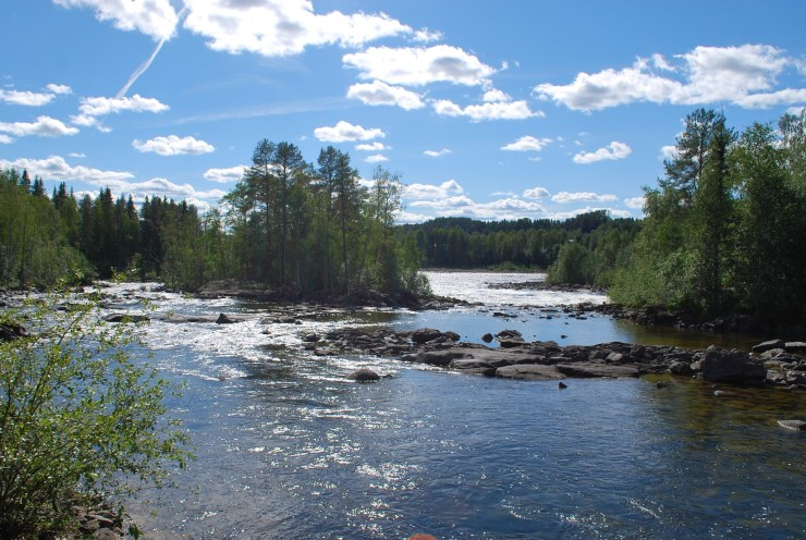 Vindeln River by sweden fishing and birding.