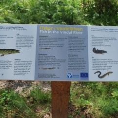 Vindeln River pike burbot information board