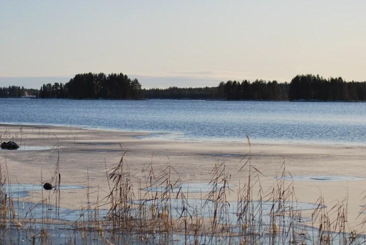 November ice forming.