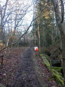 如果平日在森林散步/練跑時遇到一個定向燈籠,又沒有賽員,那可能是學校活動。