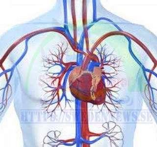 علاج فعال لضغط الدم