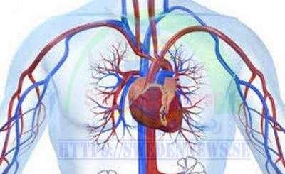 خطر يعجل الوفاة بأمراض القلب والأوعية الدموية
